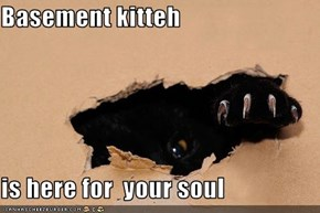 Basement kitteh  is here for  your soul