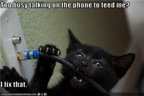 Too busy talking on the phone to feed me?  I fix that.