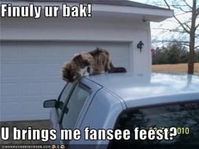 Finuly ur bak!  U brings me fansee feest?