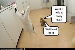We R 2 wild & crazy guyz