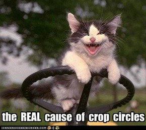the  REAL  cause  of  crop  circles