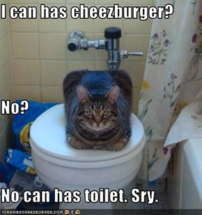 I can has cheezburger? No? No can has toilet. Sry.
