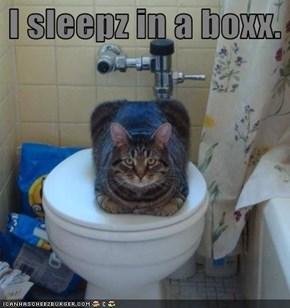 I sleepz in a boxx.