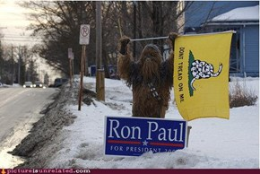Chewbacca For Ron Paul