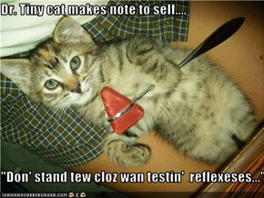 "Dr. Tiny cat makes note to self....  ""Don' stand tew cloz wan testin'  reflexeses..."""