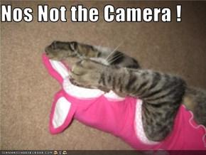 Nos Not the Camera !