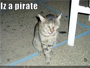 Iz a pirate