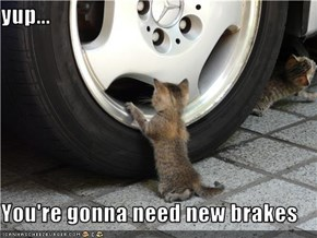 yup...  You're gonna need new brakes