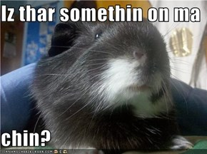 Iz thar somethin on ma   chin?