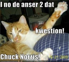 I no de anser 2 dat                           kwestion! Chuck Norris!