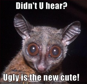 Didn't U hear?  Ugly is the new cute!
