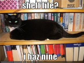 shelf life?  i haz nine