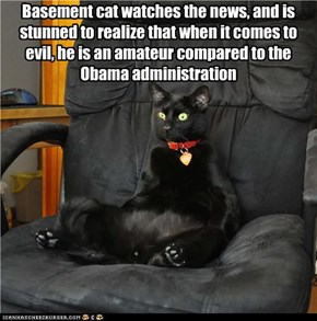 Basement cat watches the news, and is stunned to realize that when it comes to evil, he is an amateur compared to the Obama administration