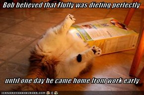 Bob believed that Fluffy was dieting perfectly     until one day he came home from work early