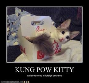 KUNG POW KITTY
