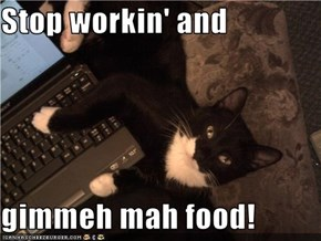 Stop workin' and   gimmeh mah food!