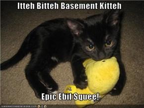 Itteh Bitteh Basement Kitteh  Epic Ebil Squee!