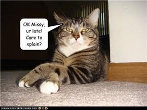OK Missy, ur late!  Care to  xplain?