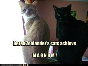 Derek Zoolander's cats achieve  M A G N U M !
