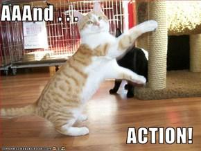 AAAnd . . .  ACTION!