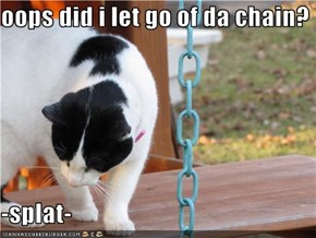 oops did i let go of da chain?  -splat-
