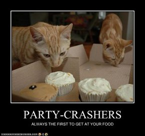 PARTY-CRASHERS