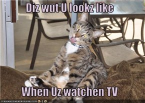 Diz wut U lookz like  When Uz watchen TV