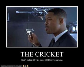 THE CRICKET