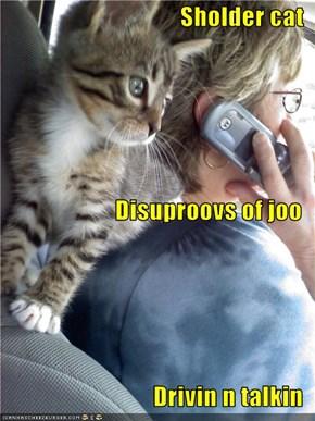 Sholder cat Disuproovs of joo Drivin n talkin