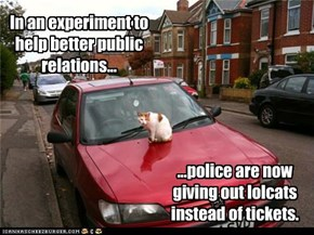 ...police are now giving out lolcats instead of tickets.