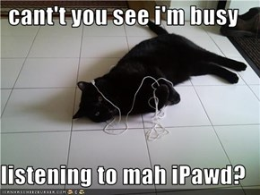 cant't you see i'm busy  listening to mah iPawd?