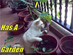 I Has A Garden