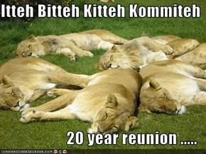Itteh Bitteh Kitteh Kommiteh  20 year reunion .....