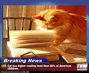 Breaking News - Cat has higher reading level than 80% of American children.