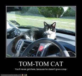 TOM-TOM CAT