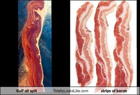 Gulf oil spill Totally Looks Like strips of bacon