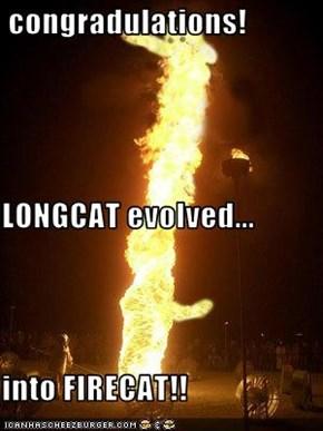 congradulations! LONGCAT evolved... into FIRECAT!!