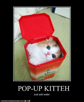 POP-UP KITTEH