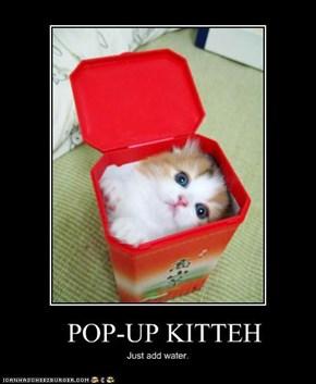 POP-UP KITTEH
