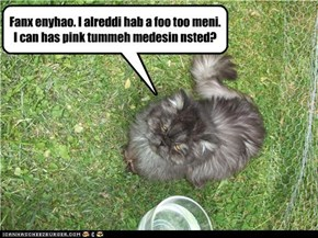 Fanx enyhao. I alreddi hab a foo too meni.  I can has pink tummeh medesin nsted?