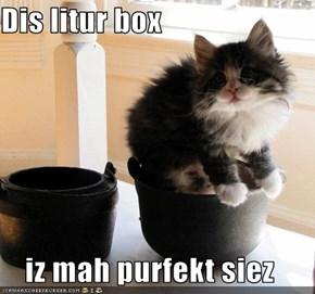Dis litur box  iz mah purfekt siez