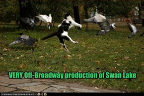 VERY Off-Broadway production of Swan Lake