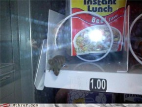 And All I Wanted Was A Soda.