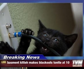 Breaking News - basment kitteh makes blackouts tonite at 10