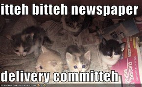 itteh bitteh newspaper  delivery committeh