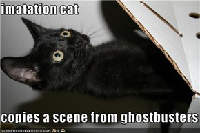 imatation cat  copies a scene from ghostbusters
