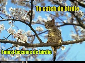 To catch de birdie