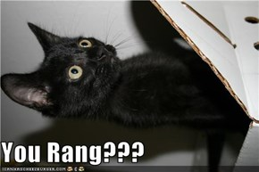 You Rang???