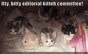 Itty, bitty editorial kitteh committee!