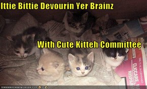 Ittie Bittie Devourin Yer Brainz With Cute Kitteh Committee